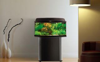 Тумба для аквариума — полезный и стильный аксессуар