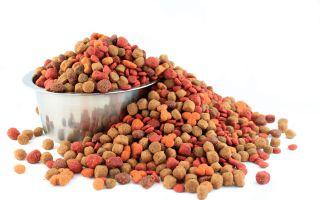 «E-ZOO» — продажа кормов и зоотоваров для домашних животных.