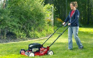 Как выбрать газонокосилку: сравниваем электрические и бензиновые модели.
