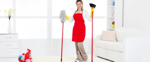 профессиональная уборщица