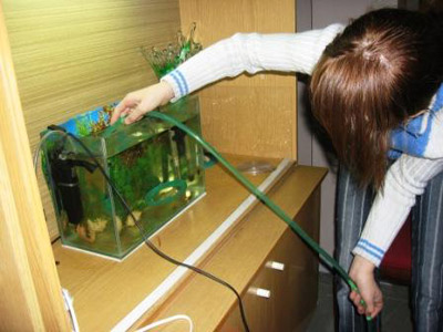 uxazhivat-za-akvariumom2