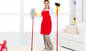 Какую именно площадь должна убирать профессиональная уборщица?