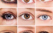 Какие бывают цвета глаз?